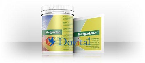 Belgica de Weerd Belga Bac 100g