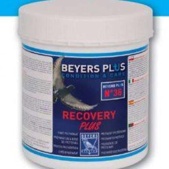Beyers Recovery Plus600gnbspBeyers Recovery Plus600g