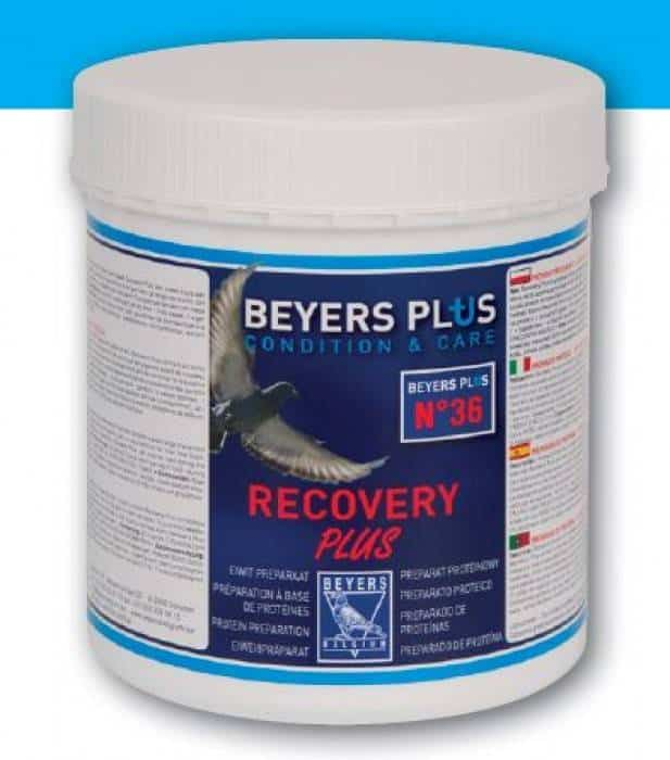 Beyers Recovery Plus-600g