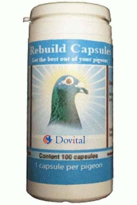 PIGEON VITALITY Rebuild Capsules 100 stuks