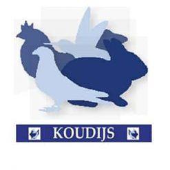 Koudijs