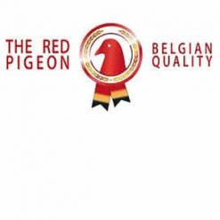 Red Pigeon