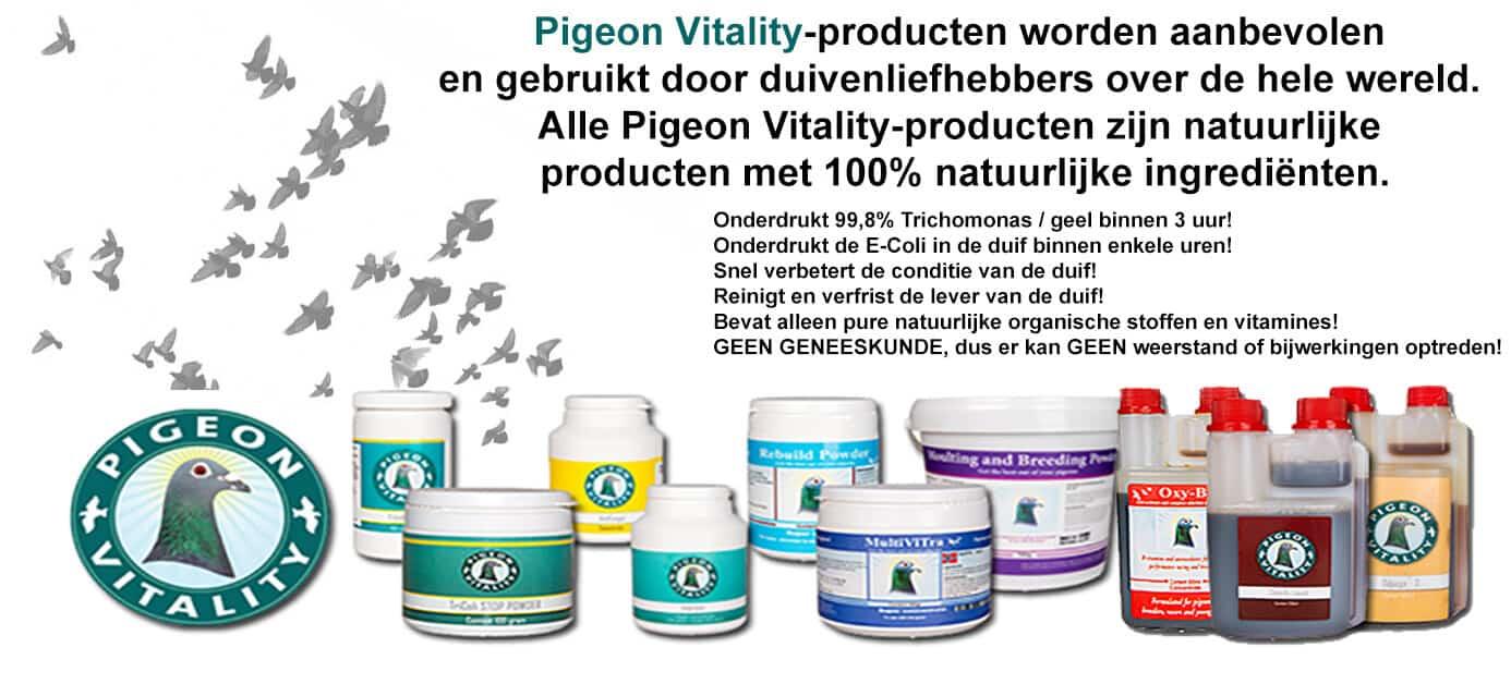 Pigeon Vitality nl