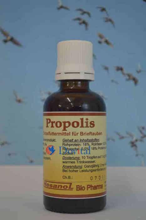 Propolis 50ml
