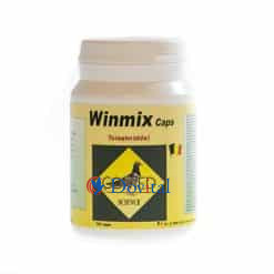 Winmix caps 100 stuk