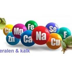 Mineralen & kalk Reptielen & Amfibieën