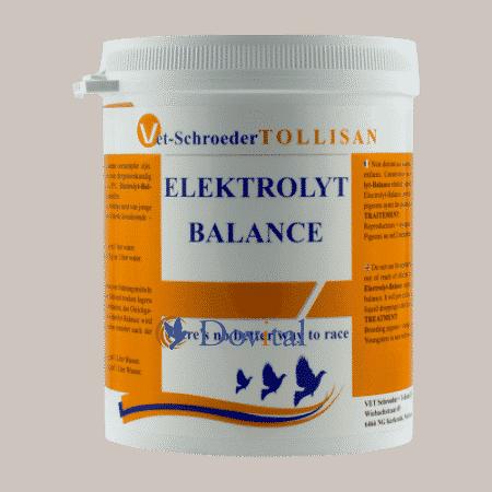 ElectrolytBalance 500grnbspElectrolytBalance 500gr