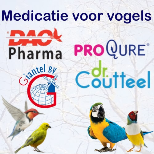 Vogels EXPORT